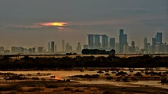 From The Other side (Sanjiban2011) Tags: abudhabi uae cityscape sunset outdoor nature landscape silhouette sky nikon d750 fullframe tamron tamron70200