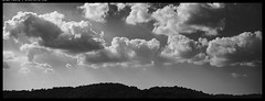 X1D5_B0003199 copy (mingthein) Tags: thein onn ming photohorologer mingtheincom availablelight xpan hasselblad medium format widescreen clouds sky bw blackandwhite monochrome x1d