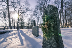 The pine tomb (LeLoupArctique) Tags: norway norvège norge scandinavia north winter snow snowy blue sky travel travelphotography cityscape seascape architecture frozen exploring urbanphotography voyage voyages nordic