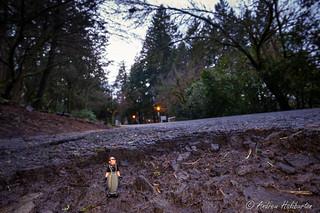 Pothole 6 – Potholes in the Park with Pelon