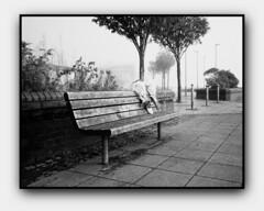 Peace will come to me (blueP739) Tags: plustek7200 portra olympus om4 om1n olympusom om3ti om2sp om10 om2n om3 om olympusom1 olympusplustekplustek7200om4 orange pussy plustek sunrise sunderland tyne bench flowers memory death lyrics depechemode film fog streetphotography blackwhite noir et blanc