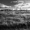 Orlando Wetlands (Ed Rosack) Tags: grass cypress olympus highres calm water hires ©edrosack panorama florida palm tree cloud orlando sky centralflorida orlandowetlandspark landscape swamp usa cloudy marsh
