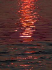 Zambezi light