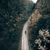 dream (Philipp Sarmiento) Tags: philipp sarmiento regensburg ratisbona canon sigma dji inspire stussy nikesb forest landscape landschaft wald bayern bavaria drone