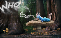 Who Are You (R. Keith Clontz) Tags: whoareyou aliceinwonderland storybook fantasy forest mushrooms giantmushroom alice bluedress sequoia redwood moon moonlight smokyletters rkeithclontz leahspitz visualiphotography