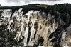 Oreo Cliffs (Keegan Smith) Tags: oreo pine landscape sheer yellowstone cliff