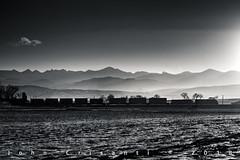 Shy Before Sunset (Colorado & Southern) Tags: bnsfrailway bnsf bnsfes44c4 gec449w intermodal intermodaltrain trains train railfanning railroad railfan railway railroads railroading rockymountains rail rr railroadtrack colorado coloradorailroads coloradotrains