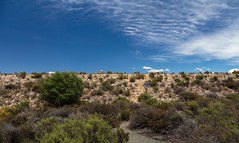 4Y4A1163 (francois f swanepoel) Tags: brandvleidam drought rawsonville scenics water westerncape worcester