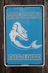 IMG_7580 (mudsharkalex) Tags: california pacificgrove pacificgroveca mermaidavenue mermaid sirena