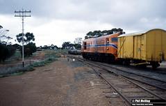 3156 XA1406 XB1008 Wickepin 9 July 1982 (RailWA) Tags: railwa phimelling westrail 1982 xa1406 xb1008 wickepin