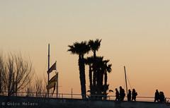 MATARÓ HARBOR (Quico Melero) Tags: mataró platja playa beach barcelona catalunya cataluña catalonia palmeres palmeras palmtree port puerto harbor capvespre ocaso sunset gent gente people banderes banderas flags