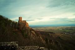 Girsberg - Petit Ribeaupierre (Alchemilla molis) Tags: ribeauville ribeaupierre alsace vosges castle chateau ruines