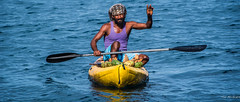 2017 - Regent Cruise - St. Lucia - Water Based Salesman (Ted's photos - For Me & You) Tags: 2017 cropped nikon nikond750 nikonfx regentcruise stlucia tedmcgrath tedsphotos vignetting paddles canoe boat male man water canoing bandana reflection waterreflection onthewater floating beard hello hellobro wideangle widescreen