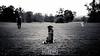 Gassi (Nicoe Volz - Heel Of Steel Photography) Tags: outdoor blackwhite dog dogs hund hunde people nature park gras feld baum himmel