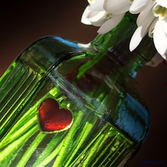 Love Snowdrops - In a bottle HMM! (Different Aspects) Tags: macromondays inabottle snowdrops heart red
