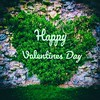 Happy Valentines Day (edelweisskoenig) Tags: valentine valentinesday valentinstag heart green happy square squared quadrat quadratisch