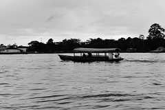 Silence (Tonika.) Tags: fish fisherman work indigenous jungle amazonjungle amazonas amazonriver water river nature photography brazil peru colombia leticia