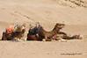K3AR9396 (aerre64) Tags: aerre64 pentax k3 k20d marocco maroc deserto colori su msabbia atlante