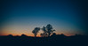 Early Bird (Tim RT) Tags: tim rt reutlingen germany 2018 landscape bokeh burn orange yellow blue sky tree beautiful morning early visual inspired hpebeast sun rise canon 6d 6dmark2 mk ii canon50mm 50mm photography love new post