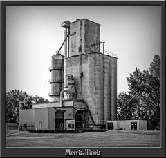 Morris Cargill Grain Elevator, Morris in Grundy County, Illinois Blog (Douglas Coulter) Tags: morrisillinois grainelevator