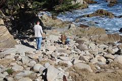 IMG_7550 (mudsharkalex) Tags: california pacificgrove pacificgroveca