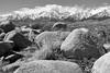Eastern Sierra (NaturalLight) Tags: eastern sierra nevada mountains sierranevada california blackandwhite bw