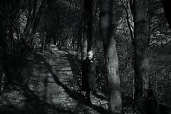 you´re just my spring light (Amselchen) Tags: mono monochrome portrate light shadow lightandshadow bnw blackandwhite trail path season spring sony a7rii alpha7rm2 sigma mc11 canon ef50mmf18ii sonyilce7rm2