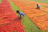 Dyeing Factory Work! (ashik mahmud 1847) Tags: bangladesh field pattern color boy working d5100 nikkor clothes dyeingclothes raw process