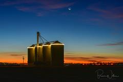 Dawn in Arizona (Arizphotodude) Tags: arizona gilbertarizona sunrise dawn silo grainsilo farming moon nikon nikond750 farm field
