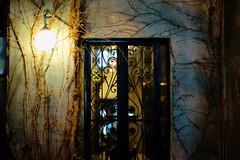 2023/1737 (june1777) Tags: snap street seoul hongdae alley night light window sony a7ii kyocera contax carl zeiss planar 85mm f14 2000 clear