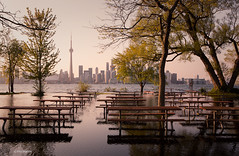 Toronto Island during 2017 summer flood - Toronto (Phil Marion) Tags: philmarion candid woman girl boy teen 裸 schlampe 나체상 벌거 desnudo chubby nackt nu ヌード nudo khỏa 性感的 malibog セクシー 婚禮 hijab telanjang nude slim plump tranny sex slut nipples ass boobs tits upskirt naked sexy bondage fuck tattoo fetish erotic feet cameltoe ebony latina cock oriental asian japanese african khoathân beach public swinger cosplay gay wife milf dick crossdress pussy panties ladyboy babe