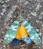 road kill lantern bug (Phil Arachno) Tags: thailand asien asia chiangdao lanternbug insecta arthropoda