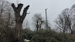 Loock'sches Panorama, Schwerte (erix!) Tags: trees bume strommast powerlines powerpole