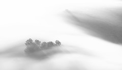 Air Waves Pt I (ajecaldwell11) Tags: xe3 sunrise ankh dawn fujifilm light trees blackandwhite hawkesbay newzealand shadow sunlight silhouette tematapeak tukituki sky fog water caldwell mist clouds