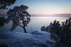Kuuvannokka (tommi.vuorinen) Tags: ruissalo turku finland archipelago tree landscape nature frozen winter cold sunset hill bush lighthouse waterside serene