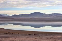 Laguna TuyactoAtacama, Chile. (pcscheid) Tags: lake tuyacto lagoa laguna lagoon lac morning nature open wild atacama chile