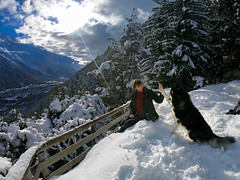 High Five to my Hooman (Wolfhowl) Tags: 2018 france fun highfive landscape montblanc cute alps kawaii mountains winter february alpinemountains франція montblancmassif clouds snow frenchalps chamonix alaskanmalamute denzel puppy travel chaletlefloria lefloria dog шамоні chamonixvalley valley europe chamonixmontblanc malamute