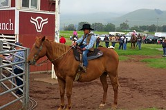 The Dude abides (BarryFackler) Tags: rodeo keikirodeo waimea bigisland kamuela parkerreanch paniolo cowboy athlete sport western hawaii polynesia 2018 arena ranching riding riders horse equestrian equine saddle spurs cowboyhat vest attitude hawaiicounty sandwichislands rodeoarena sporting bluejeans boots cowboyboots boy child keiki hawaiianislands westhawaii barryfackler barronfackler ranch island animal domesticanimal farmanimal life hawaiianculture hawaiiantradition hawaiianheritage sportingevent people