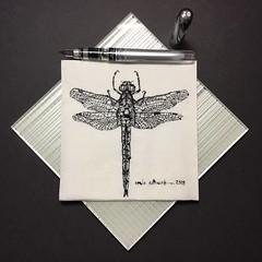 Napkin dragonfly (schunky_monkey) Tags: pendrawing inkdrawing penandink ink pen fountainpen illustrator illustration art napkinsketch sketching sketch napkin drawing draw wings bug insect dragonfly