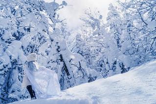 deep snow, deep white