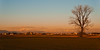 Countryside sunset (Marco MCMLXXVI) Tags: saronno lombardia italy rovelloporro prealpi grigne resegone grigna countryside sunset campagna tramonto landscape outdoor scenery winter alps alpi mountains sony nex5 nake tree rawtherapee mountain field sky