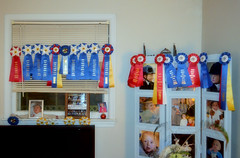2018-02-22 (6) horse show ribbons won by  Caroline and Emily (JLeeFleenor) Tags: photos photography md maryland croom birthday celebration gathering family fun ribbons awards competition horseshow red yellow blue
