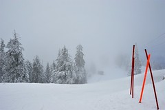Colors in winter (Mircea GHEORGHE-Thank you for all views and faves) Tags: romania