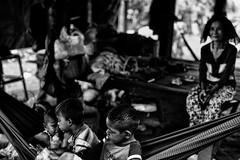Cambodia, life in a village near Kompot (rvjak) Tags: cambodge kompot family famille hamac d750 nikon bw white black noir blanc granmère enfants kids hammock contrast cambodia southeast sudest asie asia