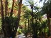 marocco 182 (sergio.agostinelli) Tags: marocco