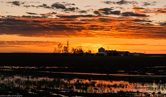 red sunset (andrew.walker28) Tags: darling downs queensland australia norwin