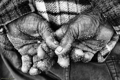 DSC05739 s (ahcravo gorim) Tags: torreira xávega mãos mar judas ahcravo gorim