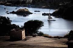Nile (Gwenaël Piaser) Tags: nile nil river fleuve africa boat sail voilier felouk felouque فلوكة faluka felucca unlimitedphotos gwenaelpiaser canon eos 6d canoneos eos6d canoneos6d fullframe 24x36 reflex rawtherapee canonef70200mmf4lisusm 70200mm4l 70200mm canon70200f4 f4l usm canon70200mmf4 ef70200mmf4lisusm zoom lseries landscape janvier january 2018 january2018 egypt egypte assouan aswan συήνη syène أسوان souenet swenet souentet ⲥⲟⲩⲁⲛ arabrepublicofegypt مِصر miṣr مَصر maṣr ⲭⲏⲙⲓ îleéléphantine île éléphantine elephantine 1000