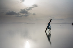 Silk (Devin Çetin) Tags: sea sky long exposure d7100 nikon travel izmir turkey fisher