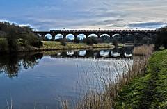 92014 on Dutton Viaduct (robmcrorie) Tags: 92014 dagenham hairston cars ford train rail railway weaver river navigation dutton viaduct nikon d7500